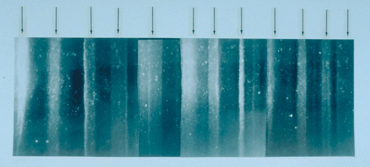 GISP2 ice core sample